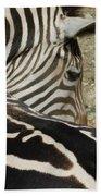 All Stripes Zebra 2 Bath Towel