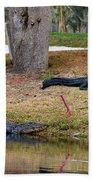 Alligator Hazard Bath Towel