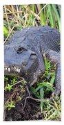 Alligator Overbite Bath Towel