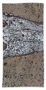 Alligator Skull Fossil 1 Bath Towel