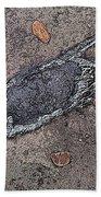 Alligator Skull Fossil 2 Bath Towel