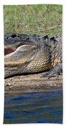 Alligator Sunning Bath Towel