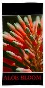 Aloe Bloom Window Bath Towel