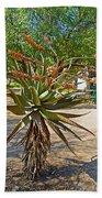 Aloe Plant In Kruger National Park-south Africa Bath Towel