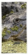 American Alligator Print Bath Towel