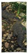 American Alligators Bath Towel
