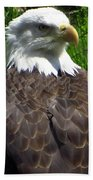 American Bald Eagle Bath Towel