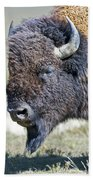 American Bison Closeup Bath Towel