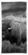 American Buffalo Or Bison In The Grand Teton National Park Bath Towel