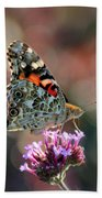 American Painted Lady Butterfly 2014 Bath Towel