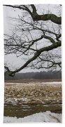 An Appleton Tree And Field In Winter Bath Towel