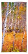 An Autumn Symphony Of Colour Bath Towel