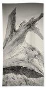 Analog Photography - Driftwood Bath Towel