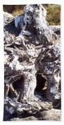 Ancient Gnarled Driftwood - Oregon Beach Bath Towel