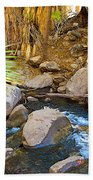Andreas Creek In Indian Canyons-ca Bath Towel