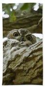 Angry Bird Bath Towel