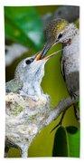 Annas Hummingbirds At Nest Bath Towel