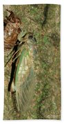 Annual Cicada Bath Towel