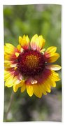 Annual Coreopsis Bath Towel