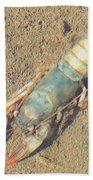 Appalachian Blue Crayfish Bath Towel
