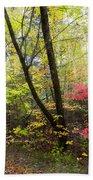 Appalachian Mountain Trail Bath Towel