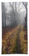 Appalachian Trail Fog Bath Towel