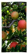 Apple Harvest - Digital Painting Bath Towel