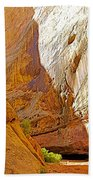 Approaching The Shadow In Grand Wash In Capitol Reef National Park-utah Bath Towel
