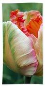 Apricot Parrot Tulip Bath Towel