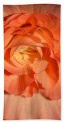 Apricot Pink Tuberous Begonia Hand Towel