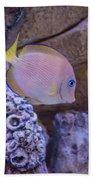 Aquarium Impression Bath Towel