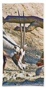 Arabian Oryx In Living Desert In Palm Desert-california Bath Towel