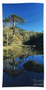 Araucaria Reflections In The Chilean Lake District Bath Towel