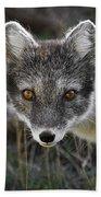 Arctic Fox In Summer Coat Bath Towel