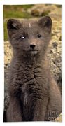 Arctic Fox Pup Alaska Wildlife Bath Towel