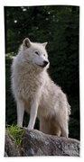Arctic Wolf On Hill Bath Towel
