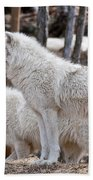 Arctic Wolf Pair Bath Towel