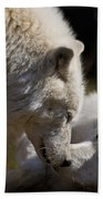 Arctic Wolf Pictures 1139 Bath Towel