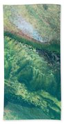 Ariel View Of Venus Bath Towel