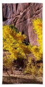 Arizona Autumn Colors Bath Towel