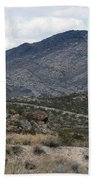 Arizona Mountains Bath Towel