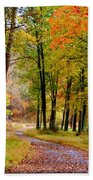 Around The Bend Bath Towel