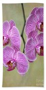 Artsy Phalaenopsis Orchids Bath Towel