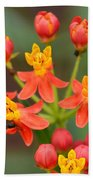 Asclepias Curassavica And Bee Bath Towel