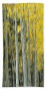 Aspen Abstract  Bath Towel