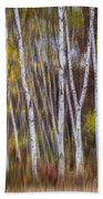 Birch Trees At Lake Maria State Park Minnesota Bath Towel