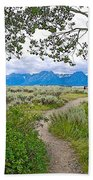 Aspen Trees On Trail To Jackson Lake At Willow Flats Overlook In Grand Teton National Park-wyoming  Bath Towel