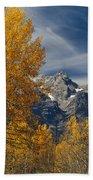 1m9352-aspens In Autumn And The Teton Range Bath Towel