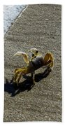 Atlantic Ghost Crab Bath Towel