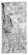 Attentive Hare Bath Towel